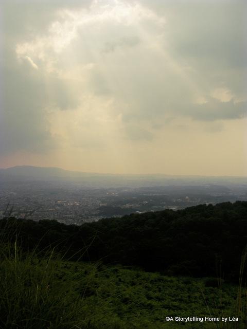42- Nara Mountain