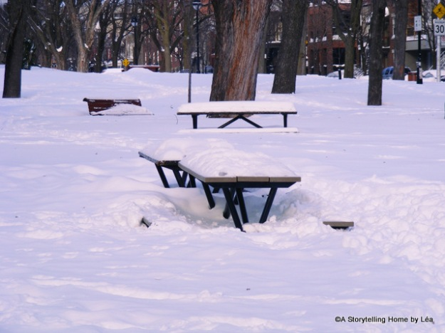 Snowy picnic tables at Parc Laurier