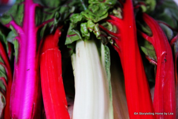 Colorful Stalks Swiss Chard_Lea_A Storytelling Home