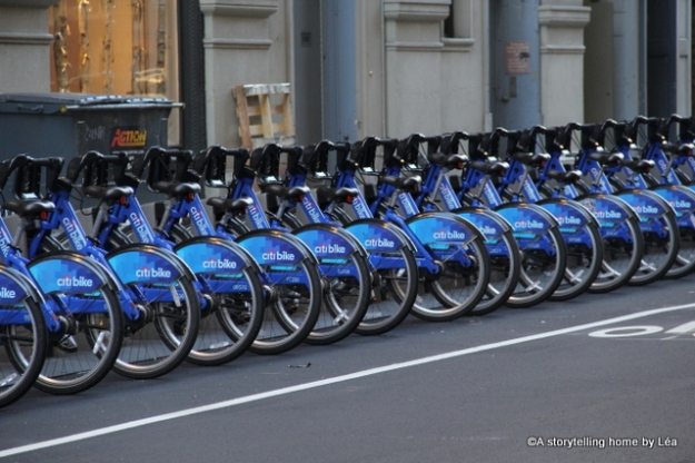 citi bike new york city 2013