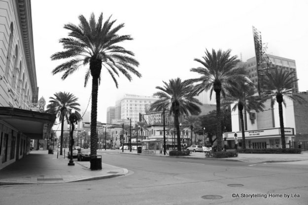 palm trees New Orleans A Storytelling Home