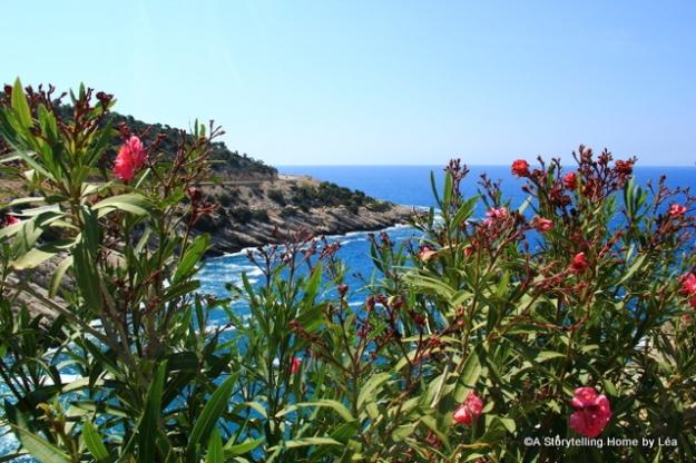 Lycian coast view_Turkey